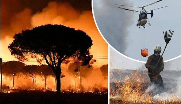 Forest fires Spain